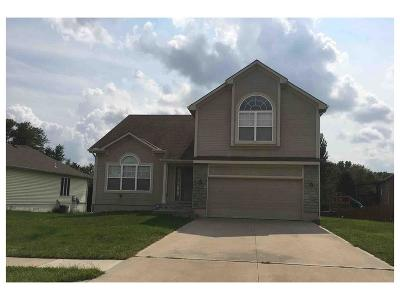 Lee's Summit MO Single Family Home For Sale: $224,900