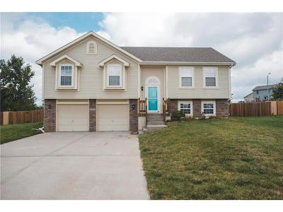 Raymore MO Single Family Home For Sale: $185,900
