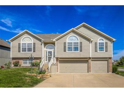 Raymore MO Single Family Home Show For Backups: $249,900