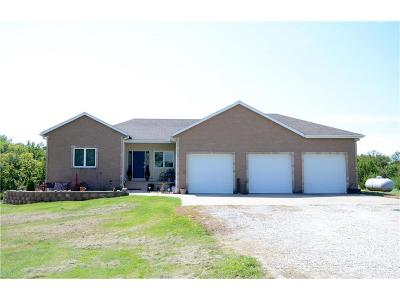 Basehor Single Family Home For Sale: 16969 Leavenworth Road