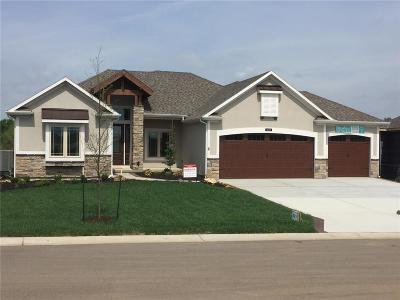 Johnson-KS County Single Family Home For Sale: 2608 W 176th Street
