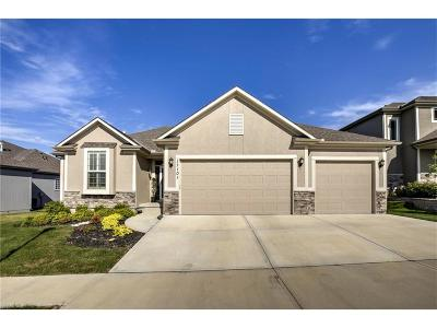Johnson-KS County Single Family Home For Sale: 17101 Noland Street