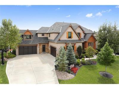 Leawood Single Family Home For Sale: 14151 Juniper Street