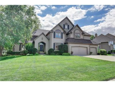Leawood Single Family Home Show For Backups: 4601 W 139 Street