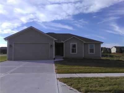 Louisburg Single Family Home For Sale: 1243 Glen Drive