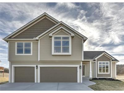 Smithville Single Family Home For Sale: 14606 Green Castle Drive