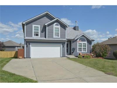 Smithville Single Family Home For Sale: 19629 Harbor Drive