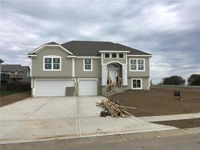 Raymore MO Single Family Home For Sale: $264,950