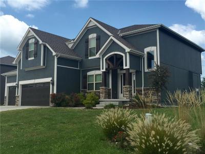 Kansas City Single Family Home For Sale: 9708 NE 97th Street