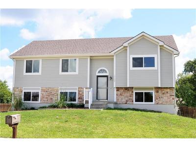 Smithville Single Family Home For Sale: 19305 Switchgrass Court