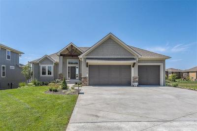 Johnson-KS County Single Family Home For Sale: 24249 W 97th Street