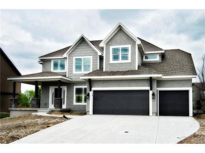 Olathe Single Family Home For Sale: 17970 W 164th Terrace