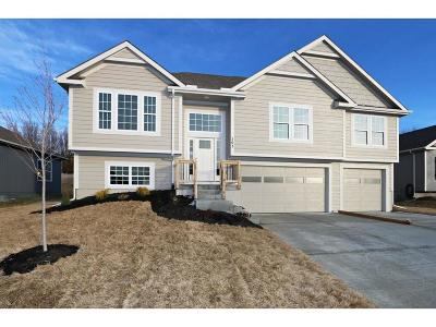 Kearney Single Family Home For Sale: 503 Crestridge Drive