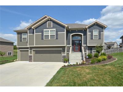 Smithville Single Family Home For Sale: 608 Tomahawk Court