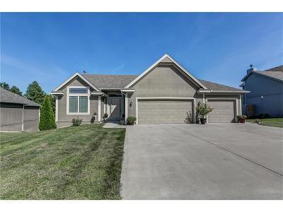 Smithville Single Family Home For Sale: 19705 NE 197th Terrace