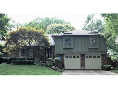 Prairie Village Single Family Home For Sale: 7404 High Drive