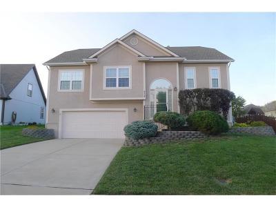 Smithville Single Family Home For Sale: 414 Killarney Lane