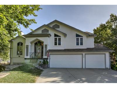 Liberty Single Family Home For Sale: 702 Hawthorne Drive