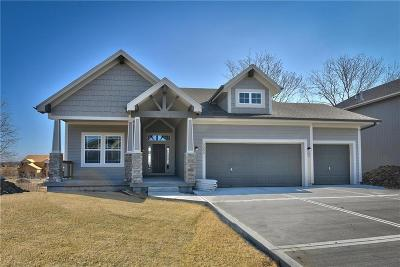 Shawnee Single Family Home For Sale: 5209 Meadow View