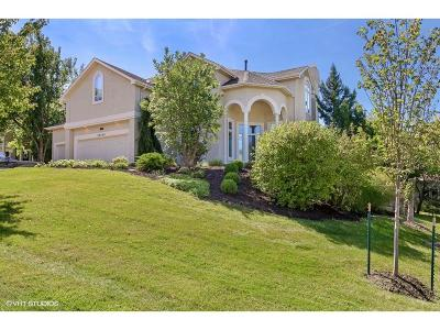 Single Family Home For Sale: 26249 W 110th Terrace