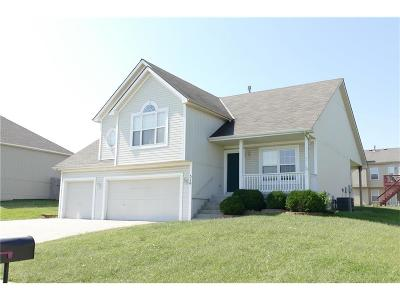 Raymore MO Single Family Home For Sale: $205,000