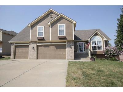 Smithville Single Family Home For Sale: 18106 Guinevere Court
