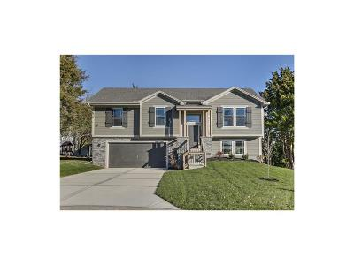 Olathe Single Family Home For Sale: 19621 W 121st Place