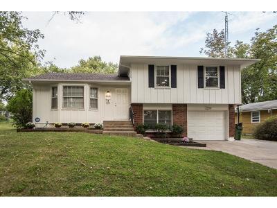 Raytown Single Family Home For Sale: 8308 Ditzler Avenue