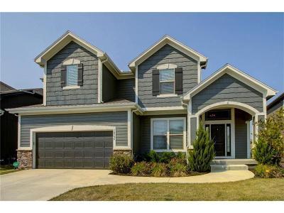Olathe Single Family Home For Sale: 18796 W 165 Terrace