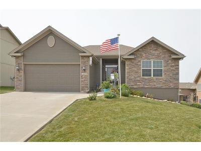Platte City Single Family Home For Sale: 12510 Lauren Circle