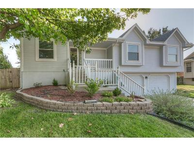 Lee's Summit Single Family Home For Sale: 1817 NE Stonewood Drive