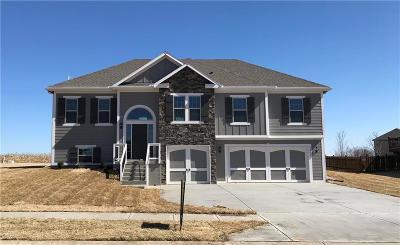 Kearney Single Family Home For Sale: 1008 W 10th Avenue