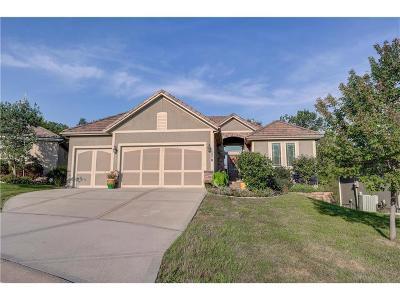 Lee's Summit Single Family Home For Sale: 4319 NE Park Trails Court