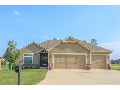 Blue Springs Single Family Home For Sale: 4305 S Stone Canyon Drive