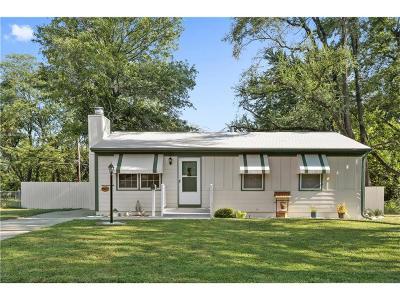 Grandview Single Family Home For Sale: 1102 E 137th Street