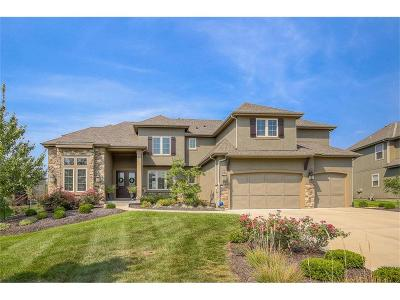 Overland Park Single Family Home For Sale: 12008 W 160th Place