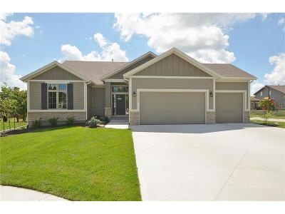 Shawnee Single Family Home For Sale: 6924 Kenton Street Street