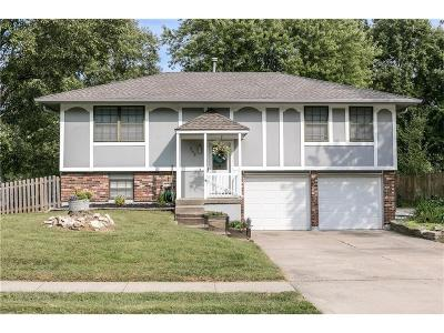 Lee's Summit Single Family Home For Sale: 203 SE Bordner Drive