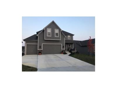 Raymore MO Single Family Home For Sale: $279,000