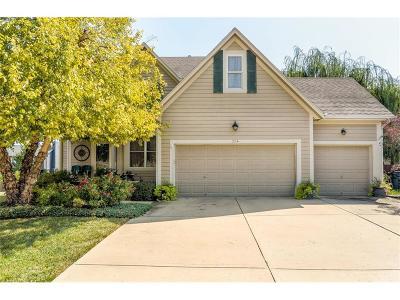 Olathe Single Family Home For Sale: 334 N Arroyo Street