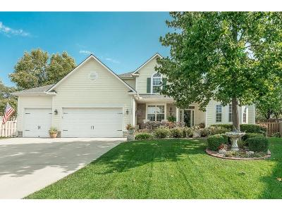 Lenexa Single Family Home For Sale: 9426 Swarner Drive