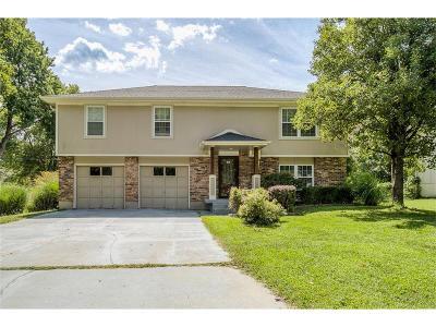 Olathe Single Family Home For Sale: 15913 W 152nd Terrace