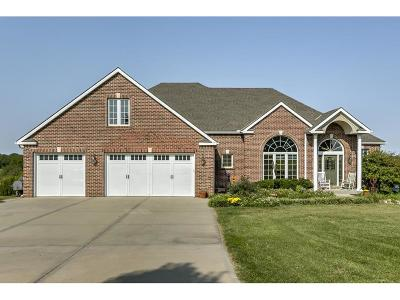 Platte City Single Family Home For Sale: 16720 NW 89th Street
