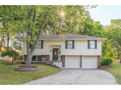 Lee's Summit Single Family Home For Sale: 1117 NE Noeleen Court