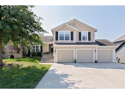 Liberty Single Family Home For Sale: 981 Holly Drive