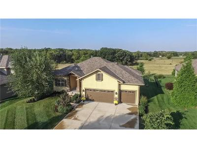 Leawood Single Family Home For Sale: 14748 Fairway Street