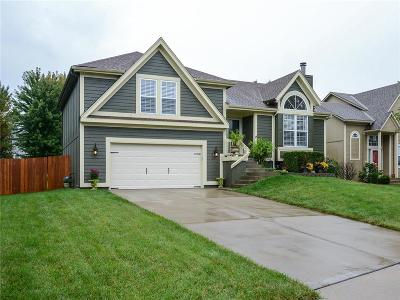 Olathe Single Family Home For Sale: 16755 W 156th Terrace