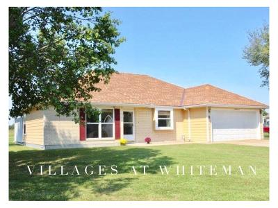 Knob Noster Single Family Home For Sale: 140 SE 1171 Street