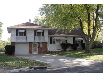 Independence Single Family Home For Sale: 4105 S Osage Street