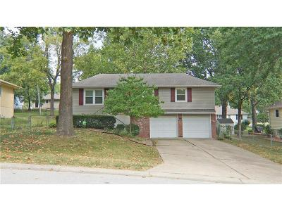 Independence Single Family Home For Sale: 17230 E 41st Street